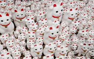 Манэки-нэко: подноготная манящей счастливой кошки Японии