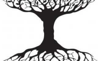 Смысл амулета Древо жизни