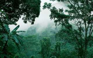 10 самых известных в мире изумрудов