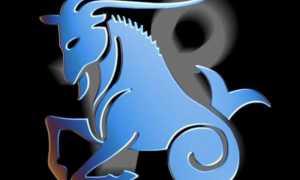Знак зодиака Козерог: даты рождения, талисманы для Козерога