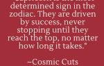 Кристаллы Козерога: 10 лучших зодиакальных камней для знака Солнца